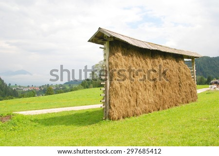 Hay dryers traditional historic structure in Slovenia - stock photo