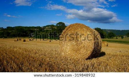 Hay field in France