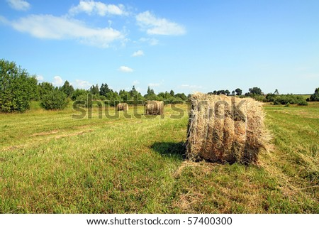 hay in stack