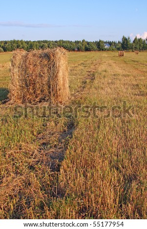 Hay roll in the field in front of village