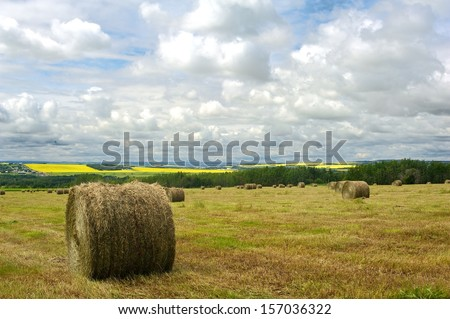 hayfield in summer with round bales wide angle view - stock photo