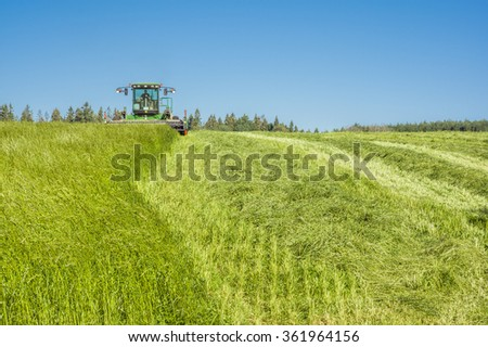 Haymaking  - stock photo