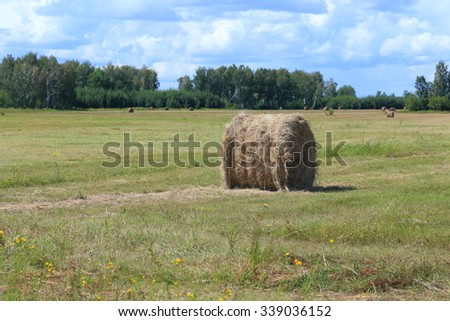 Haymaking in the summer afternoon - stock photo