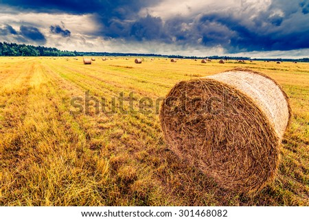Haystack in the field before the storm, close up view. Image in the yellow-blue toning - stock photo