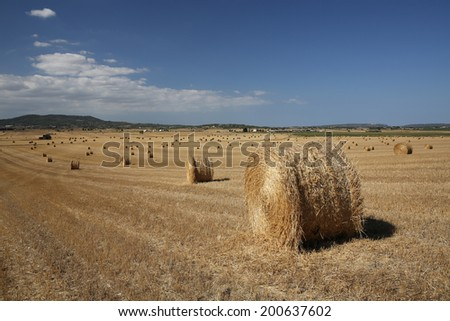 haystack in the field. good sunny weather in Majorca in summer - stock photo