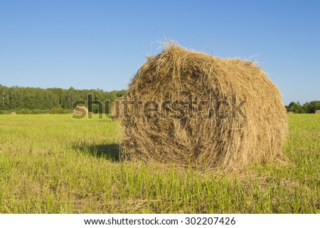 Haystack on the field - stock photo