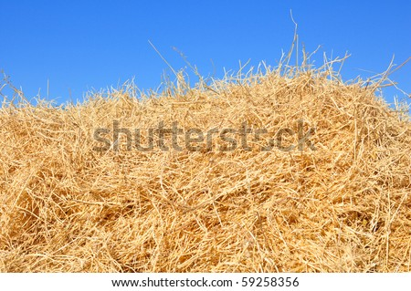 haystack on the meadow in sunny day - stock photo
