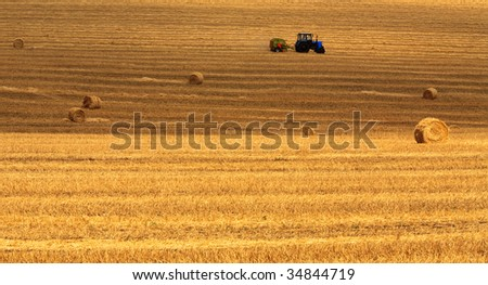 Haystacks and stubble - stock photo