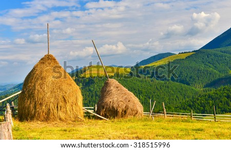 Haystacks in countryside - stock photo