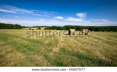 Haystacks in the field - stock photo