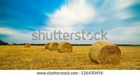 Haystacks in the fields