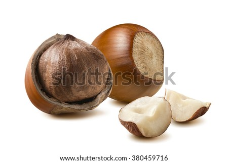 Hazelnut composition pieces isolated on white background as package design element