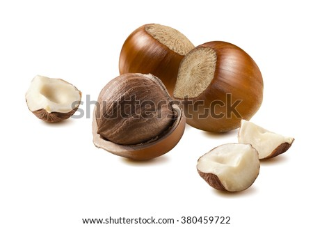 Hazelnut different pieces isolated on white background as package design element