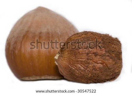 hazelnut in white - stock photo