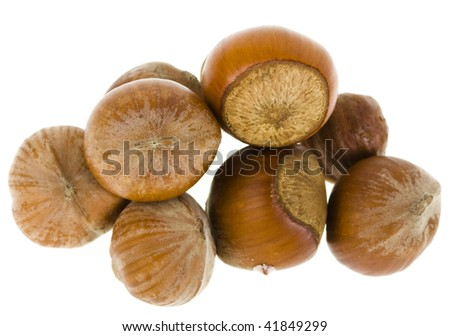 hazelnuts Isolated on a white background - stock photo
