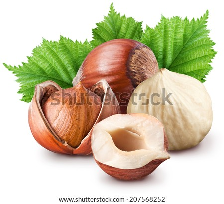 Hazelnuts isolated on a white background. File contains two clipping paths. - stock photo