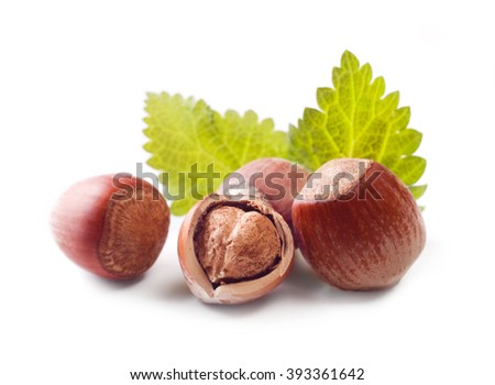 hazelnuts isolated on white background. - stock photo
