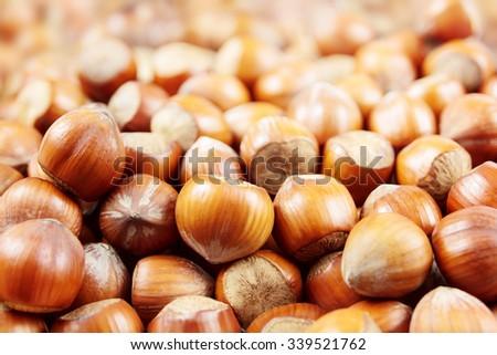 Hazelnuts macro with small depth of field - stock photo