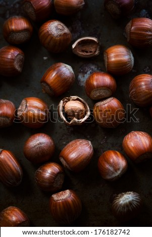 Hazelnuts on dark rusty background, the middle one is cracked