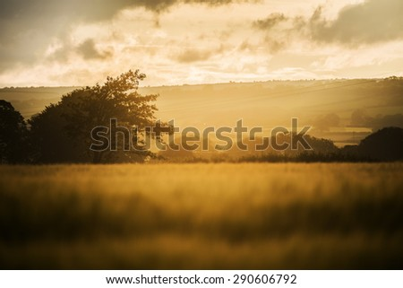 Hazy sunset in the fields with cloudy sky, Cornwall, UK - stock photo