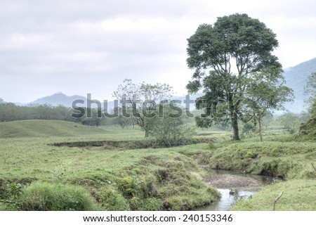 HDR image of creek running through fertile pasture land populated with trees in Chiapas, Mexico - stock photo