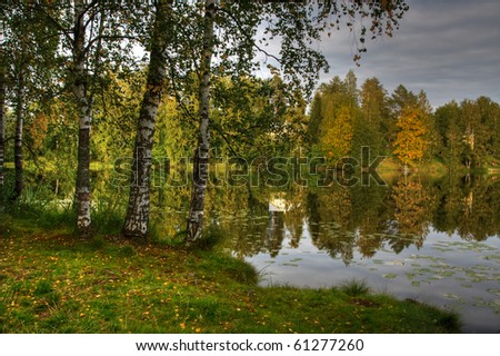 HDR image of lake shore with birch trees in Finland - stock photo