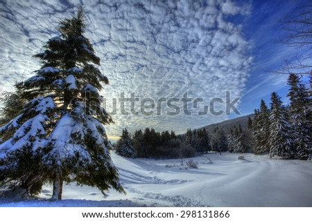 HDR image of winter snow scene in New Brunswick, Canada.