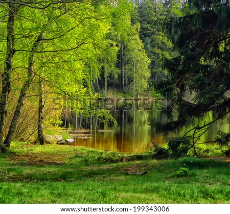 HDR landscape with pond, forest and trees - stock photo