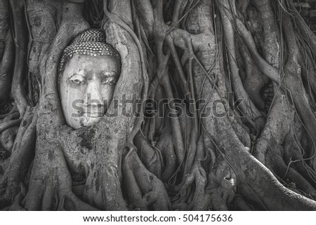 Head of Buddha in The Tree Roots in vintage tone,black and white tone, mono tone ,Shades of Gray tone, Wat Mahathat Ayutthaya, Thailand