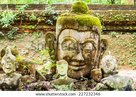 Head of Buddha statue in forest at Wat Umong, Chiang Mai, Thailand. - stock photo