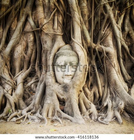 Head of Buddha statue in the tree roots at Wat Mahathat temple, Ayutthaya, Thailand. - stock photo