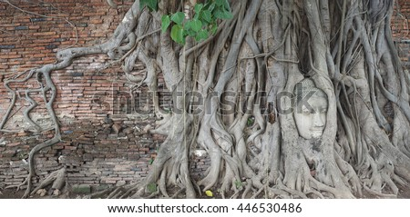 Head of Buddha statue in the tree roots. Wat Mahathat temple, Ayutthaya, Thailand - stock photo