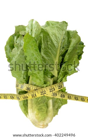 head of romaine lettuce and tape measure healthy diet concept - stock photo