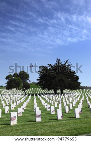 Headstones and Flags at American National Military Cemetery - stock photo