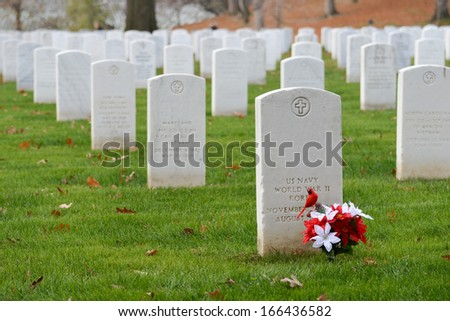 Headstones in Arlington National Cemetery near to Washington DC - United States  - stock photo