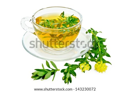 Healing herbal tea in glass cup with flowers Rhodiola rosea is isolated on a white background - stock photo