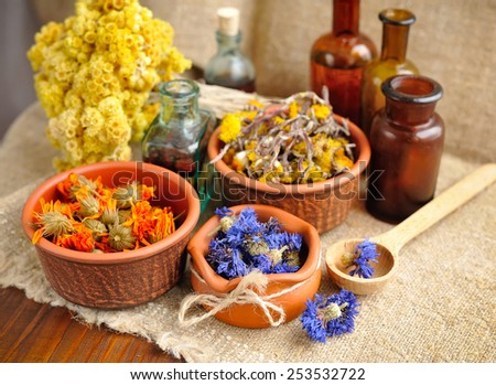 Healing herbs and tinctures in bottles on sackcloth, dried  flowers, herbal medicine - stock photo