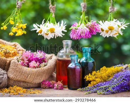Healing herbs bunches, bottle of oil or tincture, hessian bags with dried marigold and clover. Herbal medicine. - stock photo