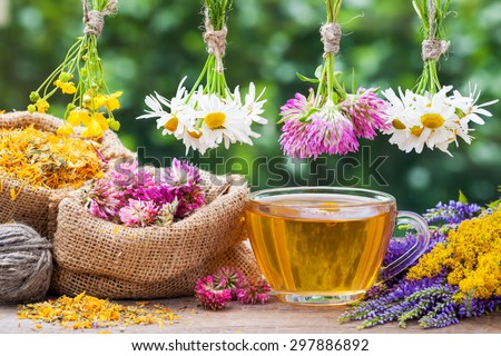 Healing herbs bunchesm,  hessian bags with dried plants and cup of healthy tea. Herbal medicine. - stock photo