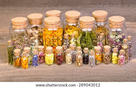 Healing herbs in bottles for herbal medicine on old wooden table. - stock photo