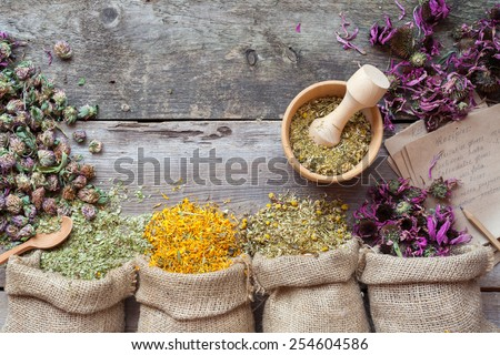 Healing herbs in hessian bags, wooden mortar and recipes, herbal medicine. Top view. - stock photo