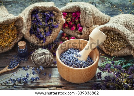 Healing herbs in hessian bags, wooden mortar with dry lavender, bottles with tincture, herbal medicine. Focus on mortar. - stock photo