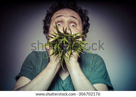 Health, ecology concept, man with green grass in the mouth - stock photo
