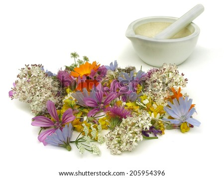 Health from nature - stock photo