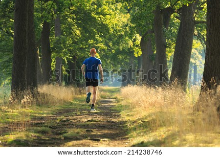 Healthy, active lifestyle man exercising outdoors: trail running in a lane of tree's on a sunny morning. - stock photo