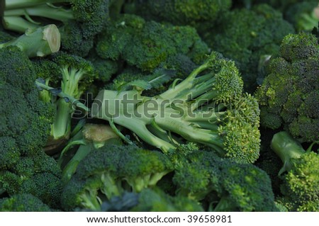 Healthy and Delicious Tasty Green Broccoli at Market