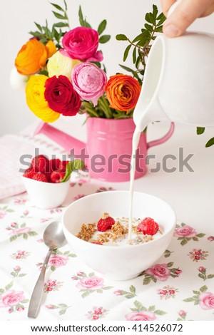 Healthy breakfast - muesli with milk and berries - stock photo