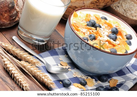 Healthy breakfast with cereals and blueberries - stock photo