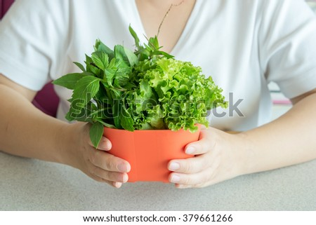 healthy eating, dieting, vegetarian food and people concept, close up of woman hands holding green vegetable.