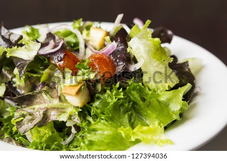 healthy eating with caesar mixed salad on white dish - stock photo